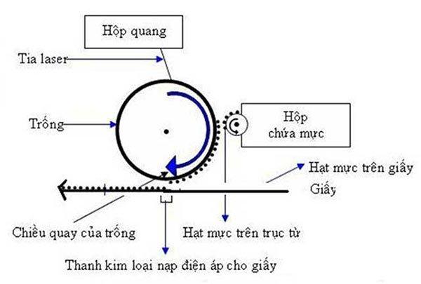 Nguyên lý hoạt động của máy in