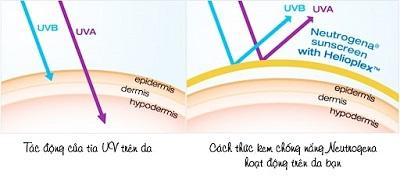 kem chống nắng neutrogena 2
