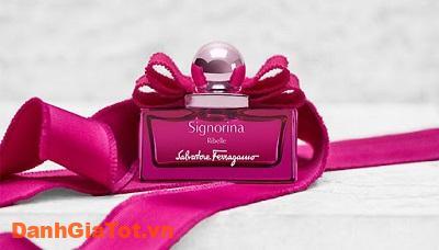 nuoc-hoa-signorina-6