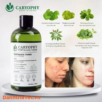 toner-caryophy-5